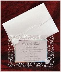 Svatební oznámení na němž jsou bílou barvou s třpytivým zaprášením natištěny rostlinné motivy a dvě lesknoucí se srdíčka, vzor 5347